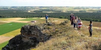 La atalaya de Las Pinzas resulta un paraje excepcional para explicar la geografía del valle del Duero. La floración vegetal de los baldíos y las cebadas y trigos de los campos cultivados ofrecen una imagen primaveral exultante.