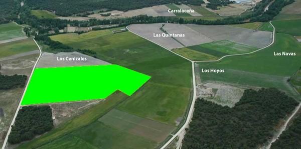 Detalle de la parcela arada y su ubicación en el yacimiento.