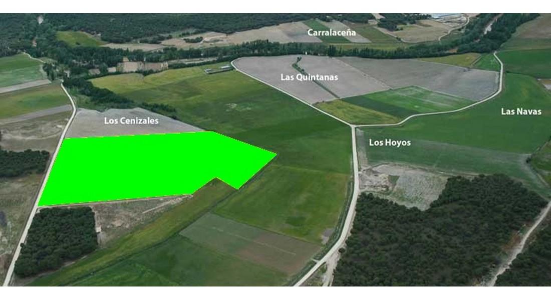 Detalle de la parcela arada y su ubicación en el yacimiento
