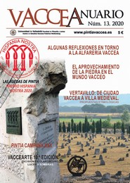 Vaccea Anuario, 13