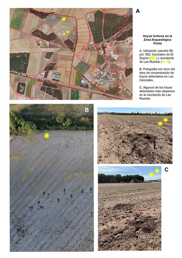 Actuación de los furtivos en la Zona Arqueológica Pintia