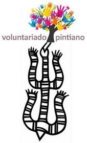 Programa de Voluntariado: <i>Pintia</i> para todos.