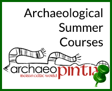 ArchaeoPintia: <i>Archaeological Summer Programs</i>